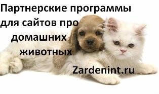 Партнерские программы для сайтов про домашних животных