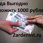 Куда Выгодно Вложить 1000 рублей